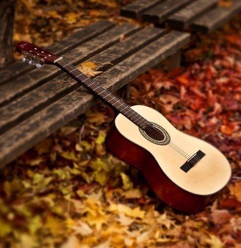 Название: гитара скамейк&#10.jpg Просмотров: 1114  Размер: 52.5 Кб