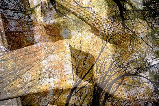 Нажмите на изображение для увеличения.  Название:Herbst 091_kl.jpg Просмотров:36 Размер:98.3 Кб ID:3772